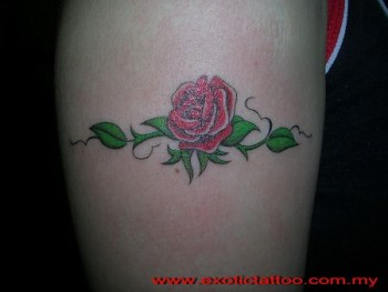 Tattoo De Una Rosa Con Su Tallo Y Espinas