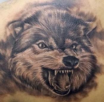 Tatuaje De Una Cabeza De Lobo Rugiendo